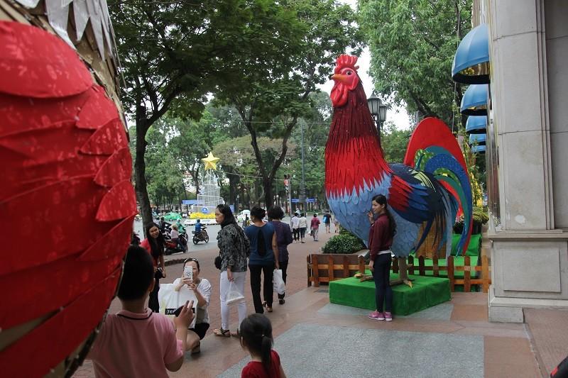 Cặp gà khổng lồ xuống phố chụp ảnh cùng người dân TP - ảnh 4