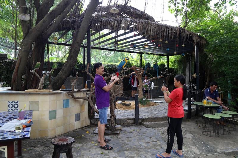 Trải nghiệm cà phê với vẹt 5.000 USD ở Sài Gòn - ảnh 13