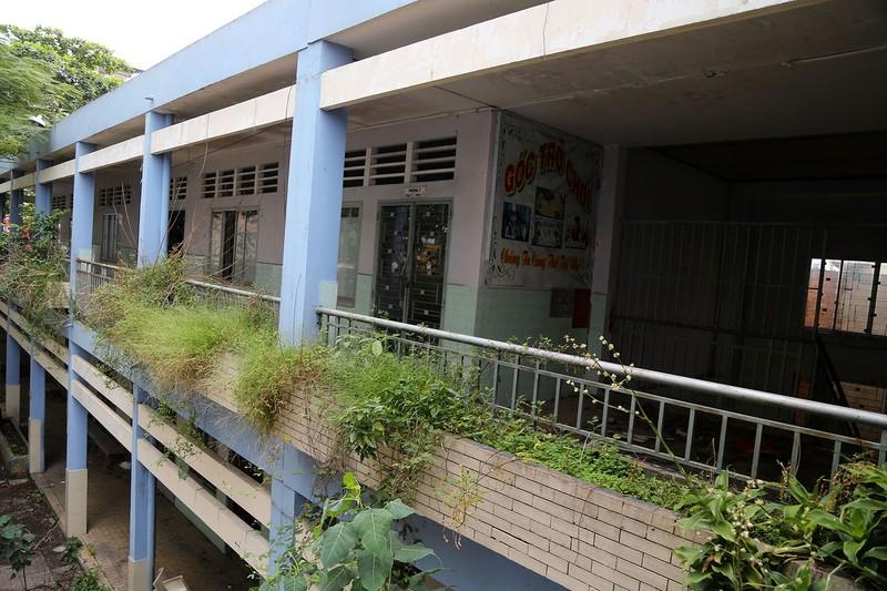 Ngôi trường tiểu học bỏ hoang gần 3 năm ở TP.HCM - ảnh 18