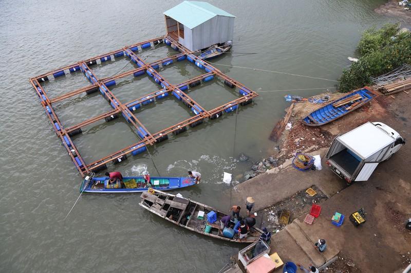 Nhịp sống hối hả ở biển Vũng Tàu trước giờ bão số 9 đổ bộ - ảnh 2