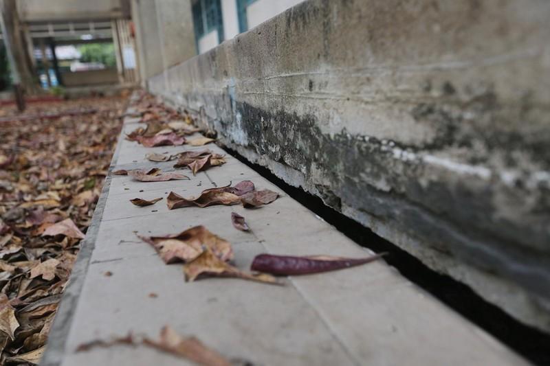 Cảnh xuống cấp bên trong trường học 40 năm tuổi bị bỏ hoang  - ảnh 3