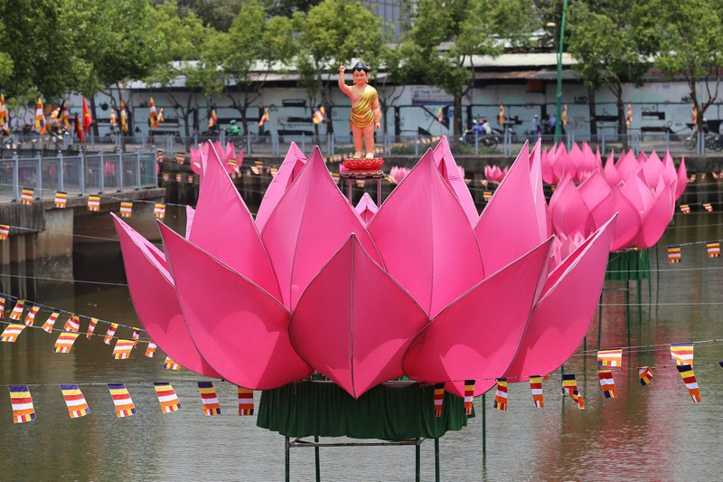 Ngắm hoa sen 7 màu 'mọc' trên kênh Nhiêu Lộc mừng Phật đản - ảnh 5