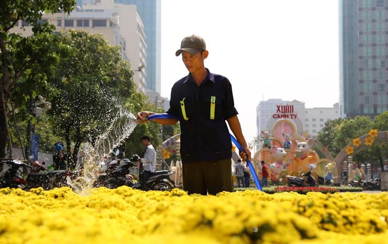 Hé lộ đường hoa Nguyễn Huệ trước ngày khai mạc - ảnh 8