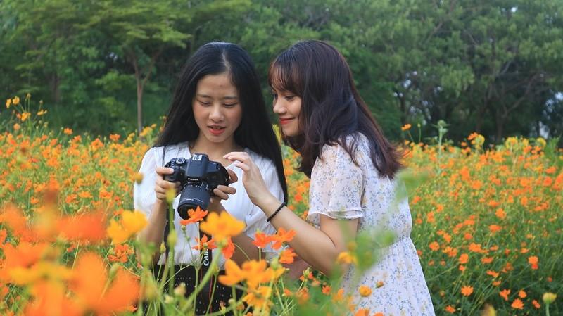 Ngắm vườn hoa, rau củ quả trong trường đại học ở TP.HCM - ảnh 7