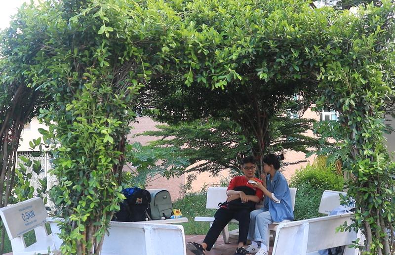 Ngắm vườn hoa, rau củ quả trong trường đại học ở TP.HCM - ảnh 8