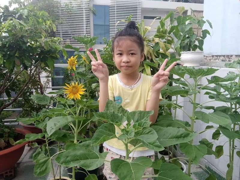 Mùa hè có dịch: Con trở thành nghệ sĩ, đầu bếp, nhà thực vật học,... - ảnh 2