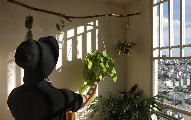 Ở nhà mùa dịch: Biến ban công thành đầm sen thơm ngát - ảnh 6