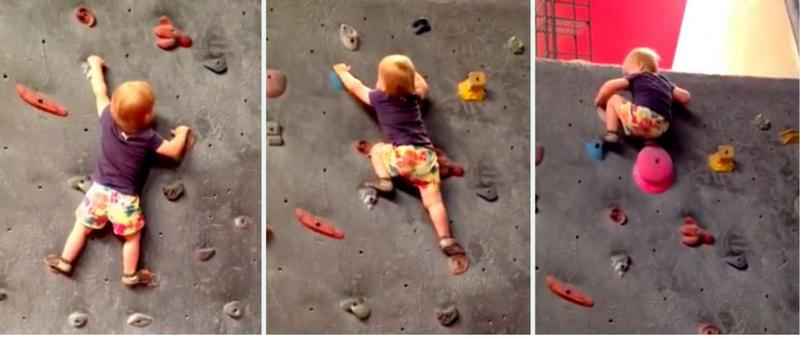 Bé 19 tháng tuổi leo núi nhân tạo như nhà chuyên nghiệp - ảnh 1