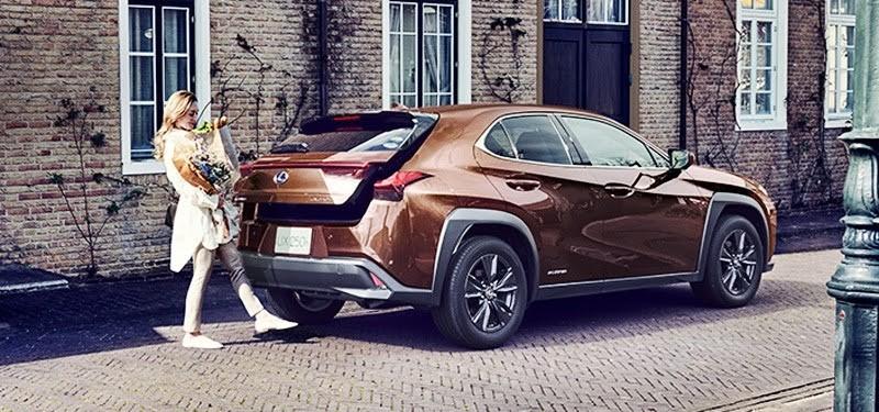Xuất hiện xe Lexus phiên bản màu lạ - ảnh 3