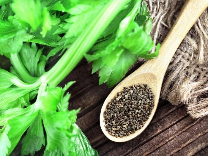 7 lợi ích sức khỏe đã được chứng minh của hạt cần tây - ảnh 1
