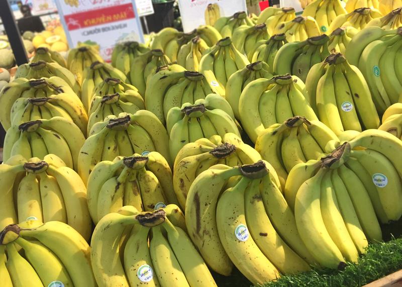 10 loại trái cây lành mạnh siêu bổ dưỡng - ảnh 2