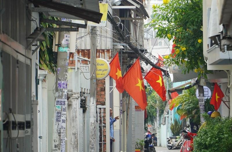 Nhiều đường ở TP.HCM rực rỡ cờ Tổ quốc mừng lễ Quốc khánh - ảnh 3