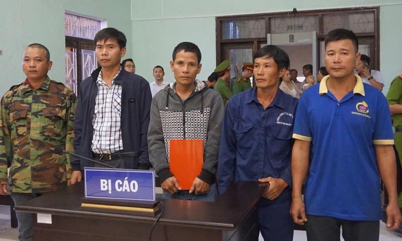 Tòa kết tội năm bị cáo vụ cưa gỗ khô, nhiều người khóc nức nở  - ảnh 1