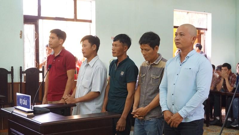 Vụ gỗ khô: Chủ tọa tuyên 5 người vô tội thôi làm chánh án  - ảnh 2