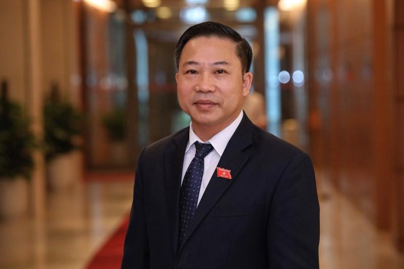 ĐBQH Lưu Bình Nhưỡng kiến nghị về vụ Hồ Duy Hải - ảnh 1