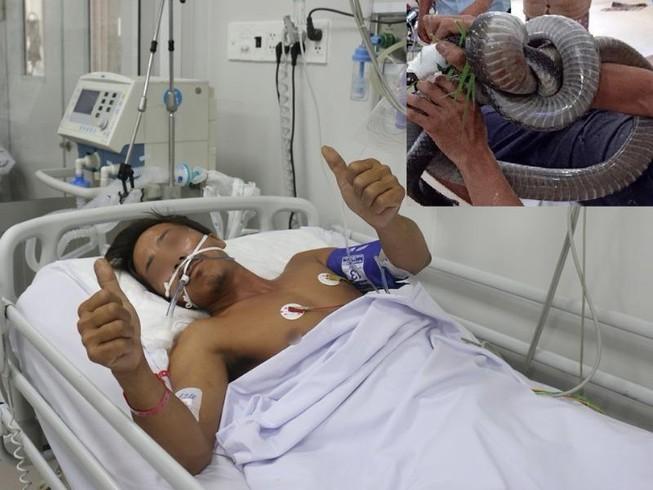 Cục Kiểm lâm nói về vụ mang rắn đến bệnh viện cấp cứu  - ảnh 1