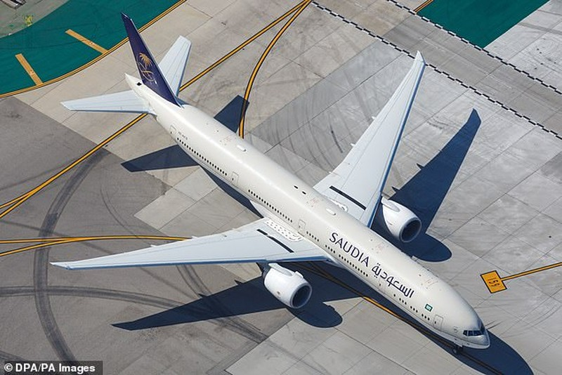 Máy bay quay đầu vì hành khách quên con ở sân bay - ảnh 1
