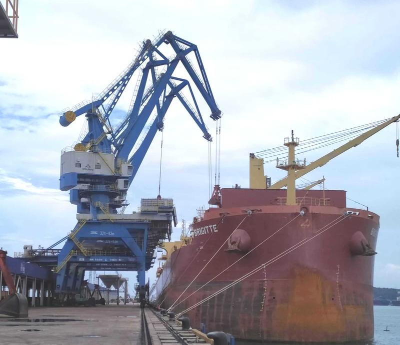 Xuất nhập khẩu Việt Nam vượt mốc 500 tỉ USD - ảnh 1