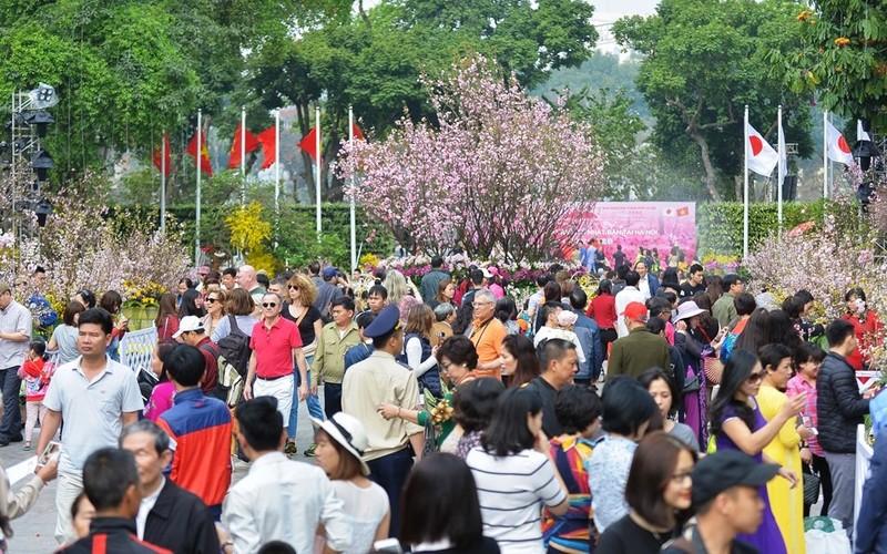 Rộn ràng lễ hội hoa anh đào Nhật Bản 2018 tại Hà Nội - ảnh 1