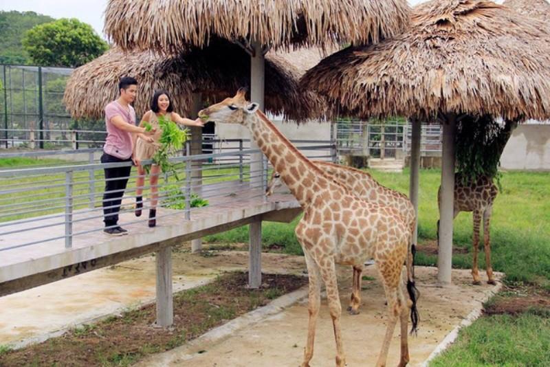 KDL sinh thái Diễn Lâm – nơi trải nghiệm cung bậc cuộc sống - ảnh 2