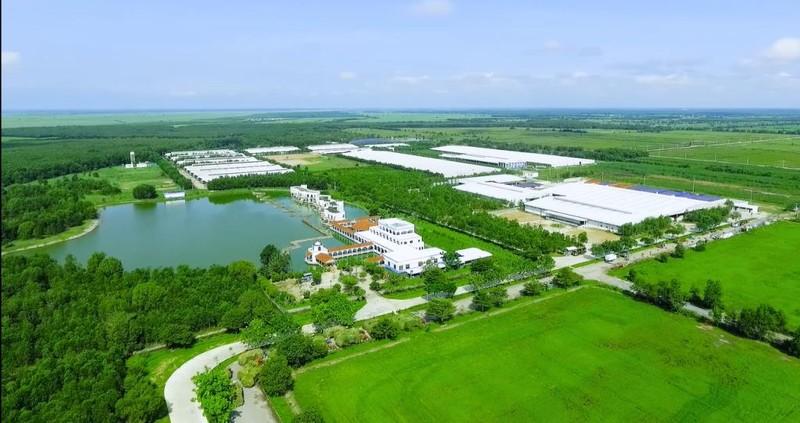 Nhờ vùng nguyên liệu lớn, Vinamilk dẫn đầu thị trường sữa - ảnh 2