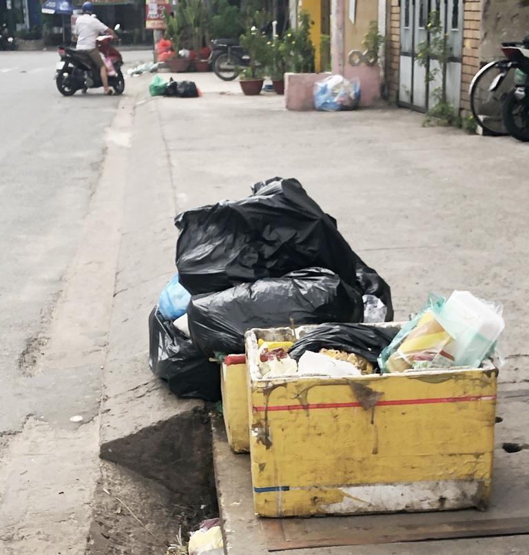 TP.HCM giám sát việc xử lý ý kiến của dân về xả rác - ảnh 1