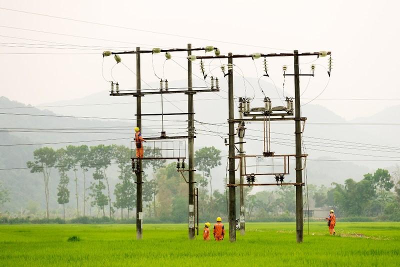 EVN hoàn thành xuất sắc nhiệm vụ xây dựng điện nông thôn - ảnh 1