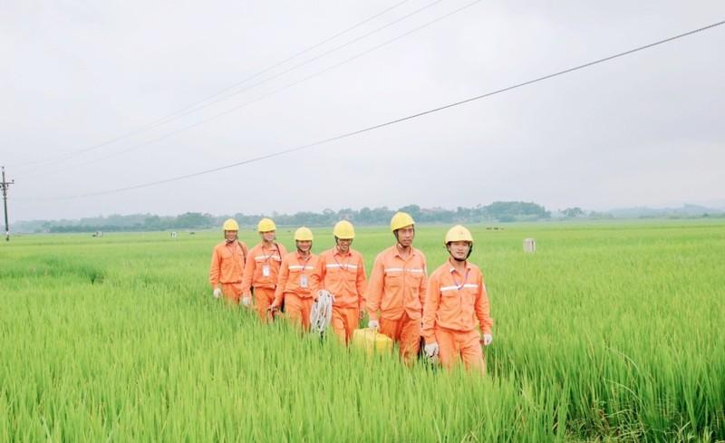 EVN hoàn thành xuất sắc nhiệm vụ xây dựng điện nông thôn - ảnh 2