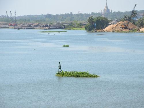 Cấp bách giải cứu sông Đồng Nai - ảnh 1