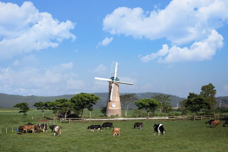 Trang trại Vinamilk phát triển nông nghiệp theo hướng bền vững - ảnh 2