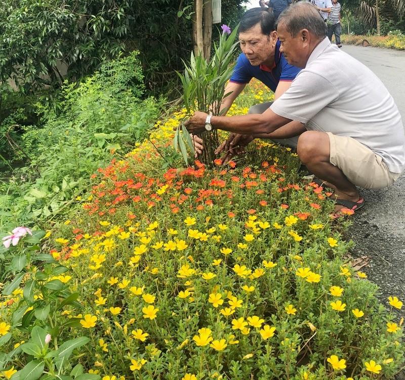 VWS trồng cây xanh và hoa dọc nhiều tuyến đường ở Đa Phước - ảnh 4