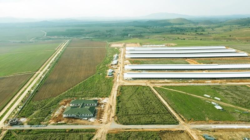 """Siêu trang trại của Vinamilk tại Lào sẽ """"cho sữa"""" vào đầu năm 2022 - ảnh 1"""