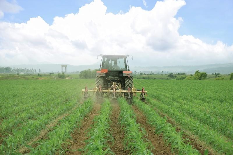 """Siêu trang trại của Vinamilk tại Lào sẽ """"cho sữa"""" vào đầu năm 2022 - ảnh 2"""