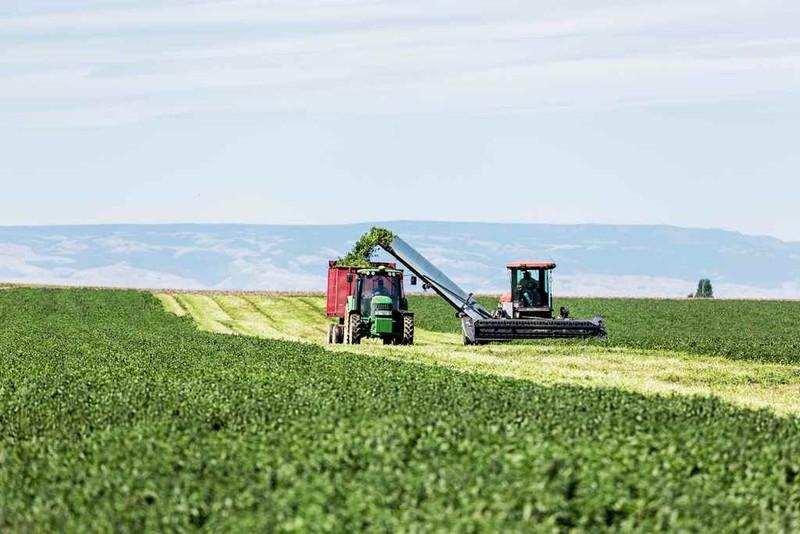 Bên trong nông trại hữu cơ làm nên những sản phẩm Amway chất lượng - ảnh 1