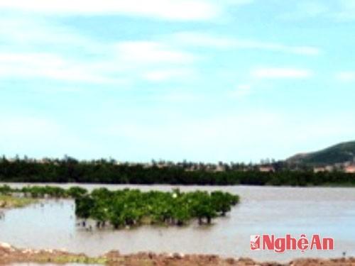 Bờ biển Quỳnh Thuận, nơi phát hiện tử thi