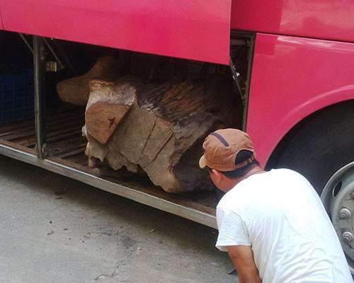 Liên tiếp bắt xe khách chở gỗ quý - ảnh 1
