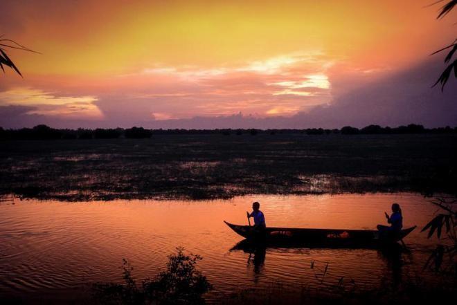 Tràm Chim, thiên đường mùa nước nổi - ảnh 3