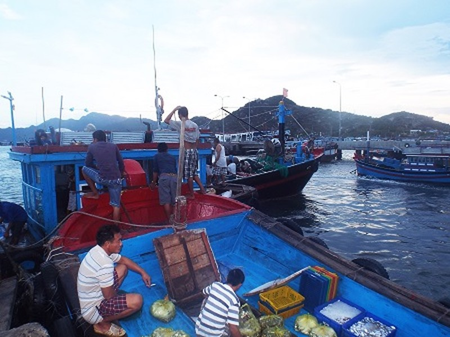 Sau một đêm đánh bắt trên biển, thuyền bè tấp nập ghé cảng Bình Ba để bán hải sản.