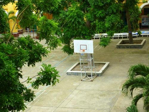 THPT Trưng Vương - ngôi trường cổ kính đầy thơ mộng - ảnh 10