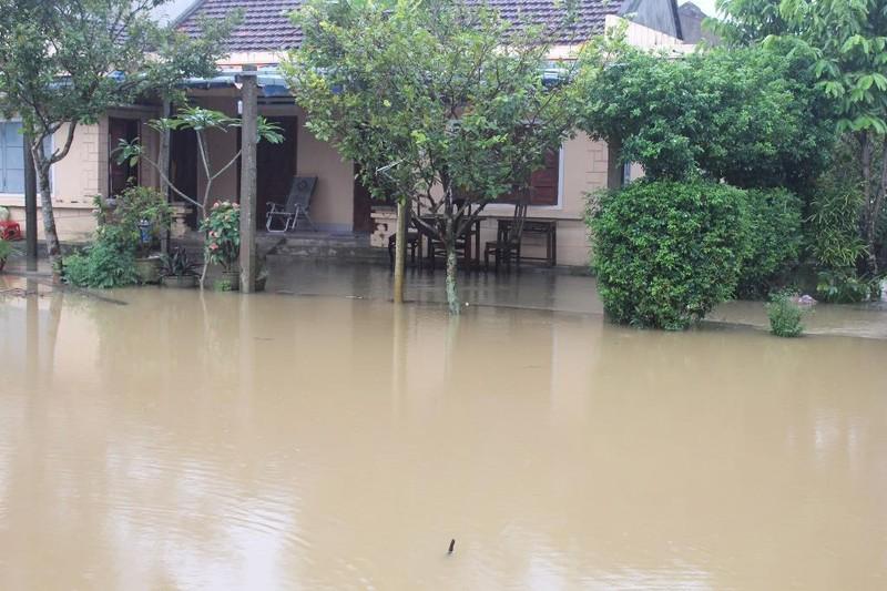Nhiều khu dân cư dọc sông Vệ bị lũ uy hiếp.