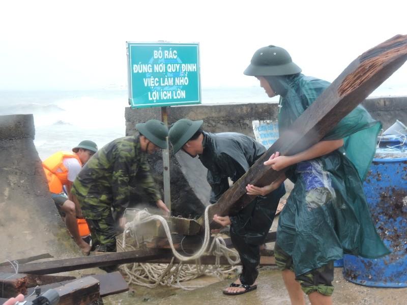 Ngư dân Lý Sơn thiệt hại 45 tỉ vì bão số 12   - ảnh 1