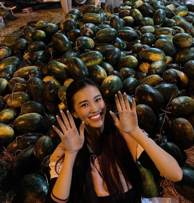 Danh hài Thúy Nga bị trộm, sao Việt mua dưa hấu, quà Valentine - ảnh 3