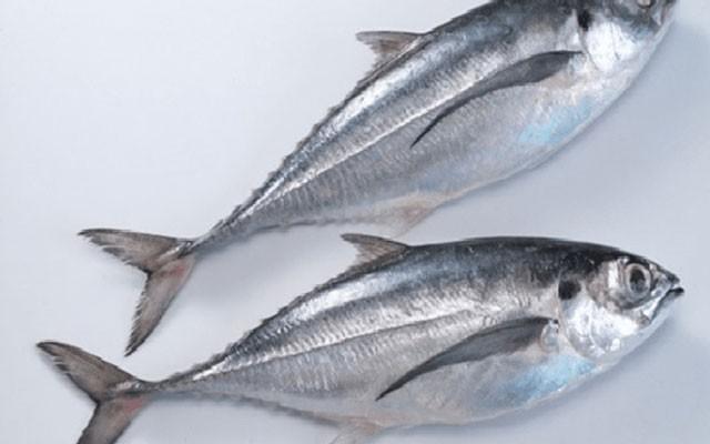 Cá sòng kho ớt xanh ngày biển khát  - ảnh 2