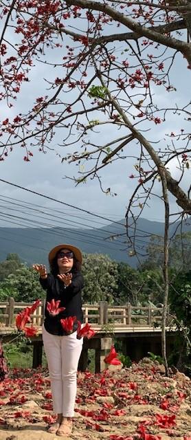 Đi tìm mùa hoa gạo bỏ quên ở núi rừng Quảng Nam  - ảnh 3