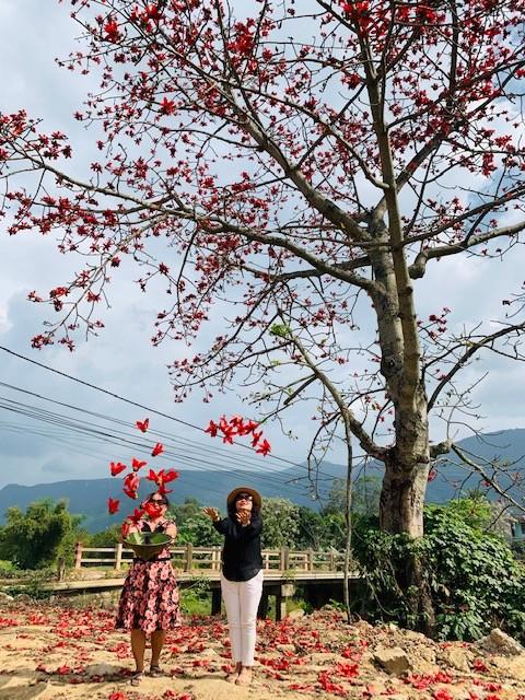Đi tìm mùa hoa gạo bỏ quên ở núi rừng Quảng Nam  - ảnh 4