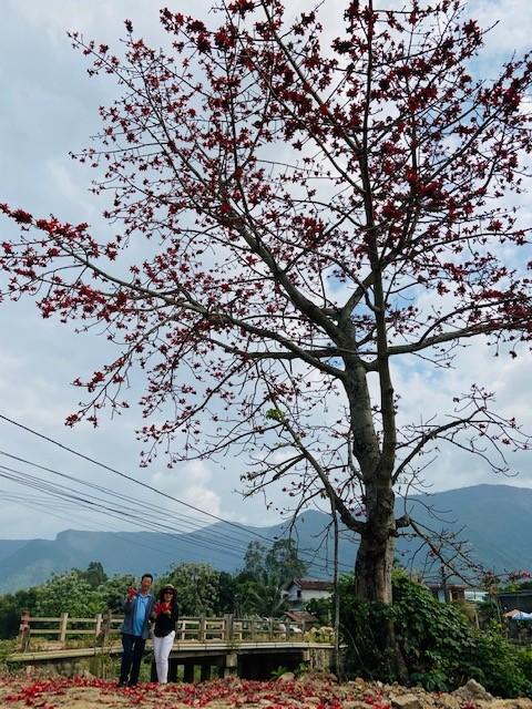 Đi tìm mùa hoa gạo bỏ quên ở núi rừng Quảng Nam  - ảnh 6