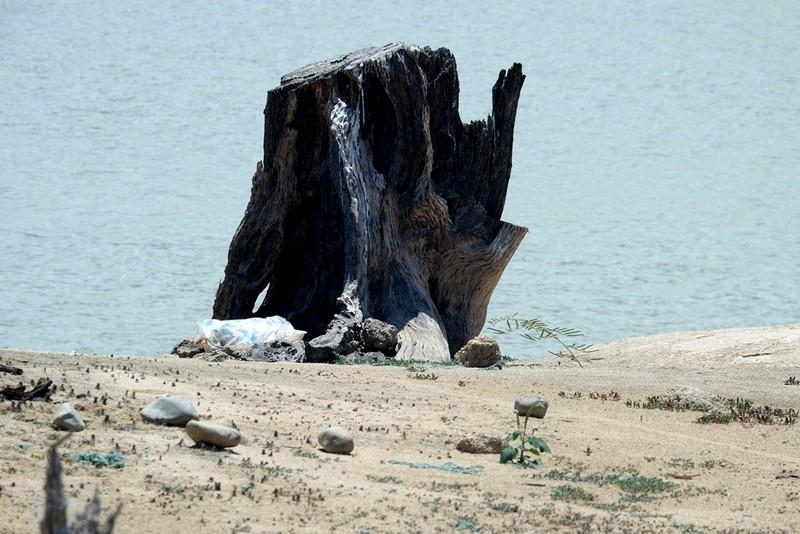 Ngỡ ngàng 'công viên cát' dưới lòng hồ Suối Dầu ở Khánh Hòa - ảnh 5