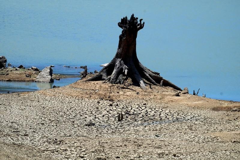 Ngỡ ngàng 'công viên cát' dưới lòng hồ Suối Dầu ở Khánh Hòa - ảnh 11