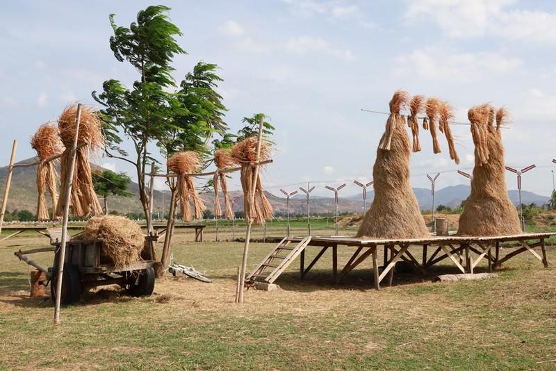 Thích thú với đồng cừu thân thiện ở Suối Tiên Cam Ranh - ảnh 8