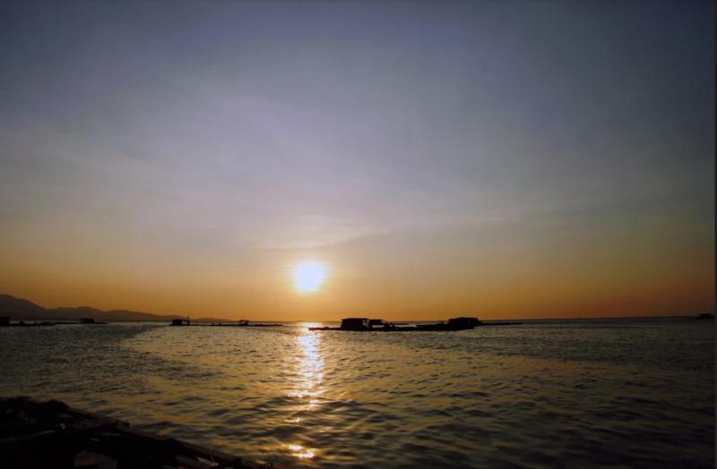 Về Ninh Thuận ra làng bè Đông Hải xem tắm cá - ảnh 2